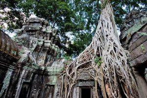 7Angkor Wat tour - 1 Tag