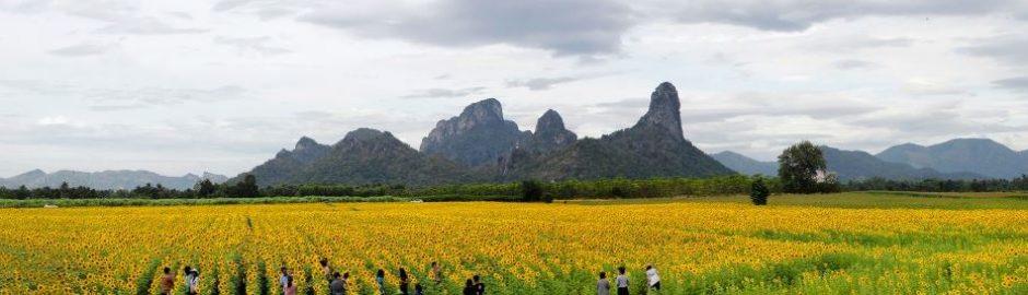 Ausflug in die Landschaft von Bangkok