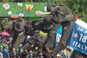 Samphran Elefanten